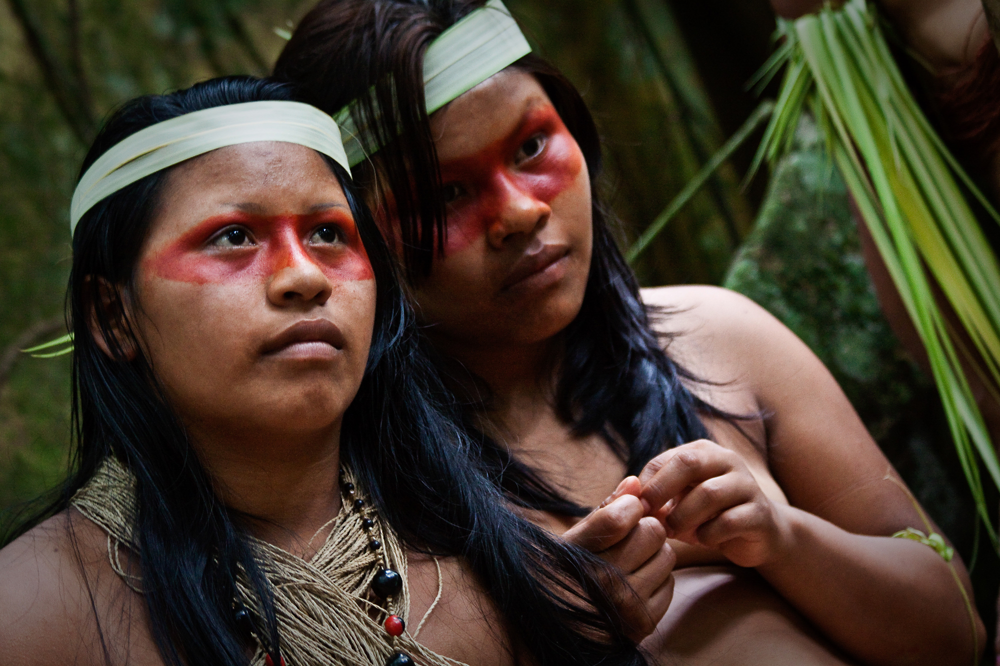 Indigenous group wins historic land battle against the Ecuadorian government