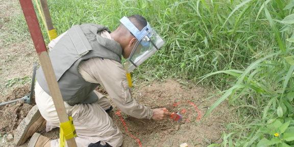 Landmines Colombia Coca