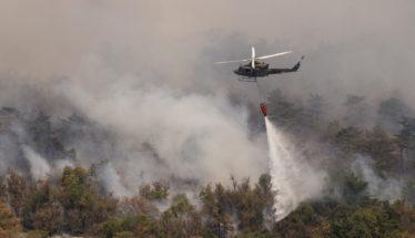 Deforestation Amazon Forest Fires