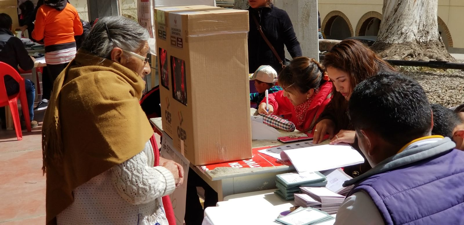 "OAS audit of Bolivian elections shows ""intentional manipulation"""