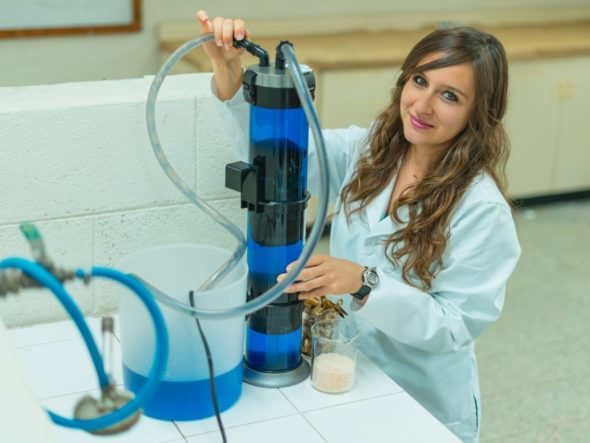 Women in STEM Latin America
