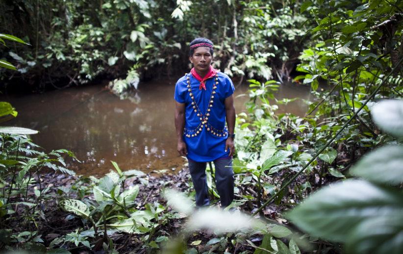 indigenous amazon